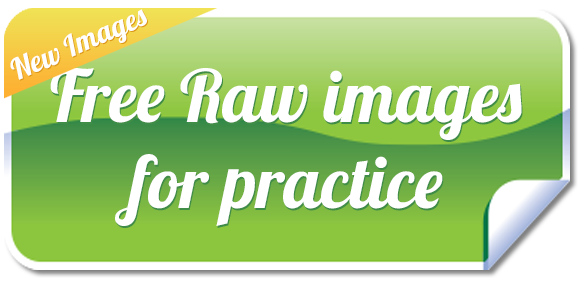 Free Raw Images for Practice